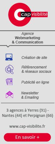 agence webmarketing Paris Nantes Perpignan