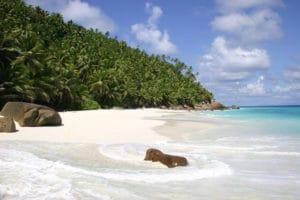 Partir en vacances aux Seychelles en profitant pleinement du soleil